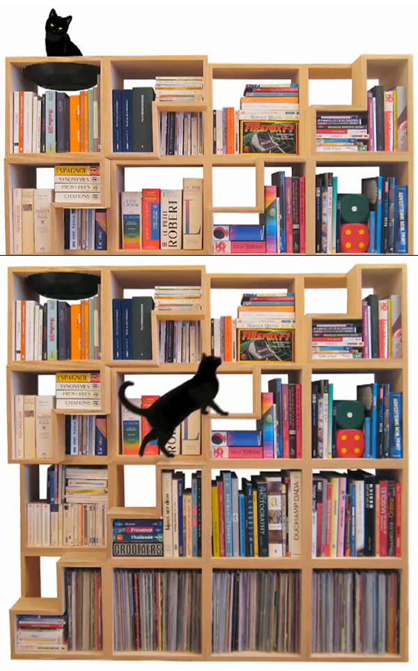 Cat-Library